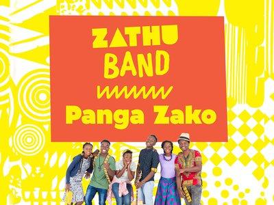 Panga Zako Artwork